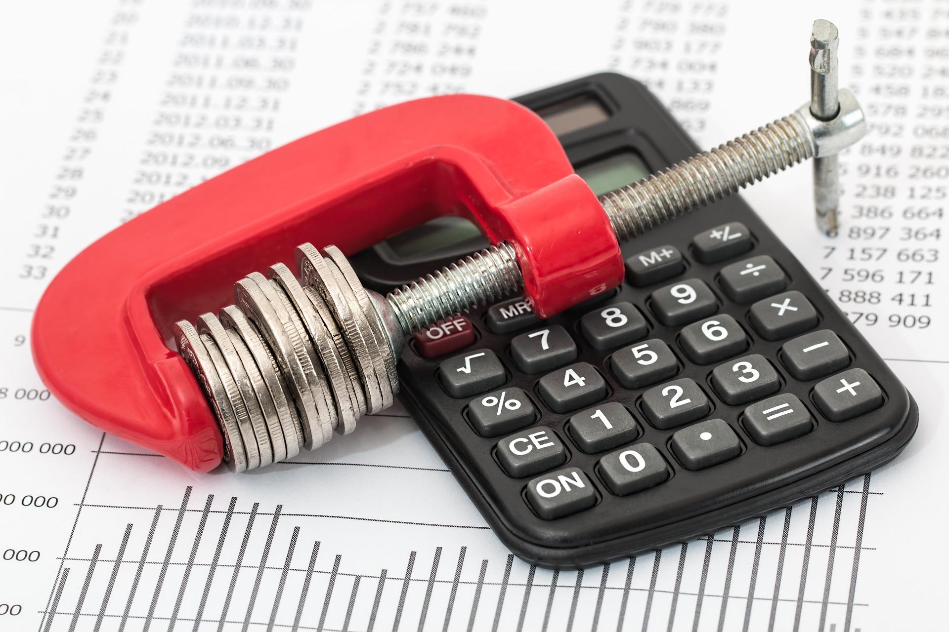 Orçamento é idealizado pelo poder executivo, mas conta com consulta pública (Crédito: Imagem de Steve Buissinne por Pixabay)